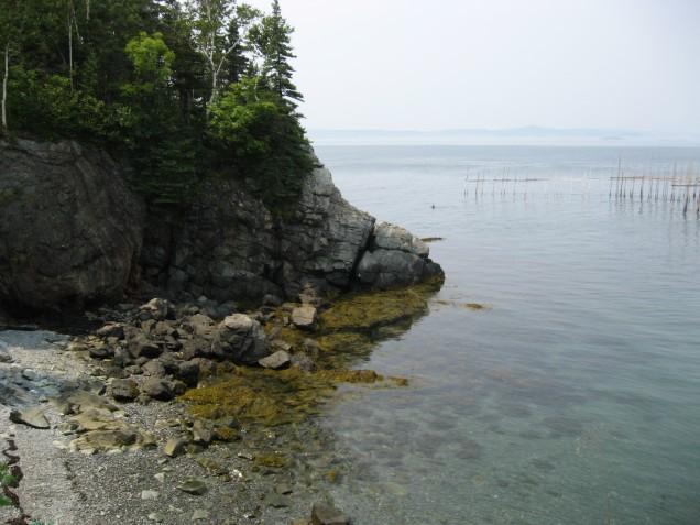 Campobello Island view