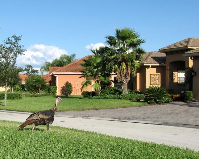 Solivita, Florida
